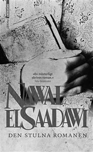 Den stulna romanen