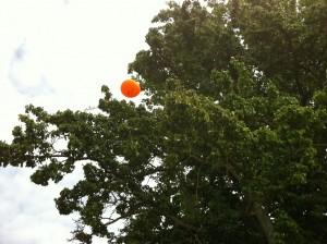 Folkpartiballong i ett träd i Almedalen
