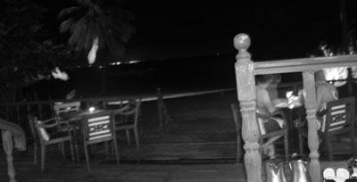 Bintan by night