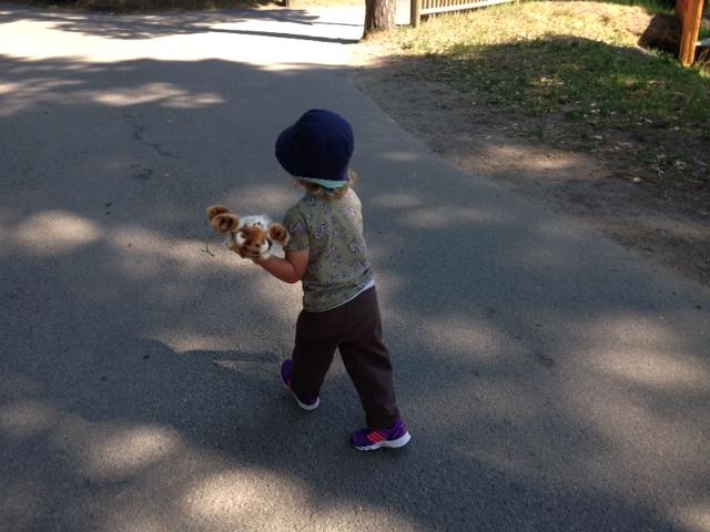 Hugo med en ny tiger inhandlad på Kolmården
