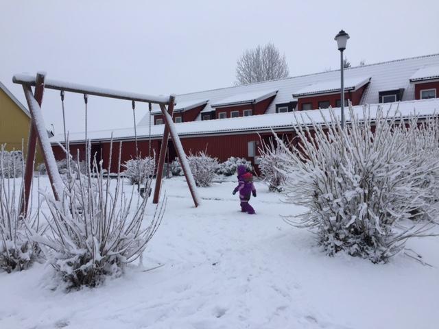 Hugo i snön