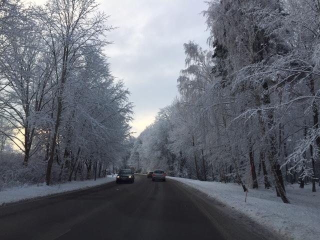 ÅKa hem genom ett vinterlandskap