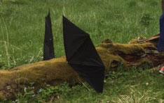 Sagovandring - draken