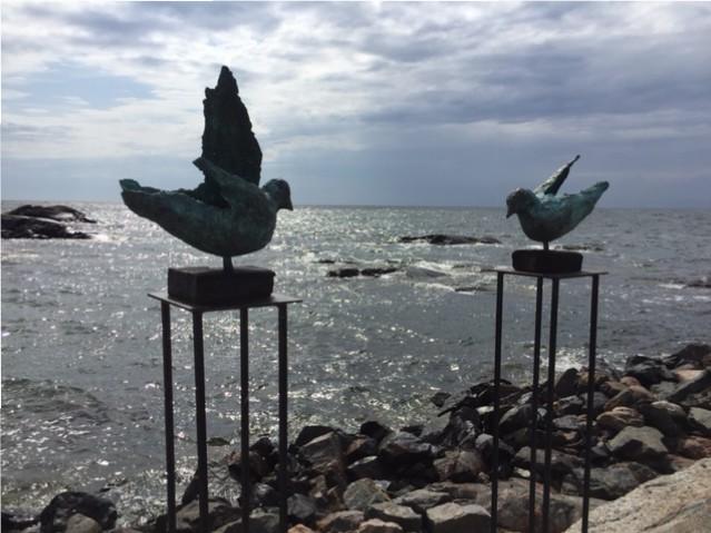 Fåglar och vatten och Landsort