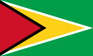 Guyanas flagga
