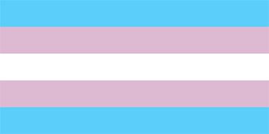 Transflaggan