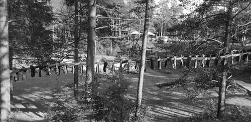 Tröjor av Kaarina Kaikkonen