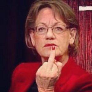 Schyman pekar finger