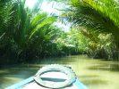 Mangroveträsk i Mekongfloden i Vietnam