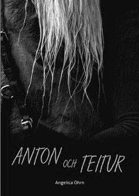 Anton och Teitur