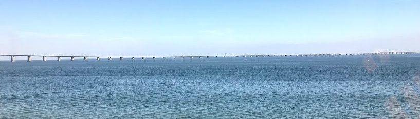 Vasco da Gama-bron
