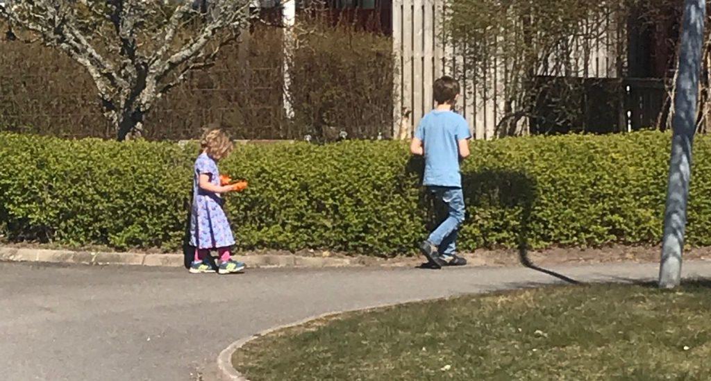 Barnen letar nyckelpigor