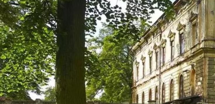 Wladyslaw Reymont litteraturmuseum