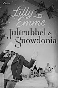 Jultrubbel i Snowdonia