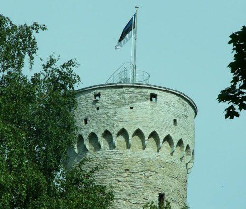 Långe Herman i Tallinn