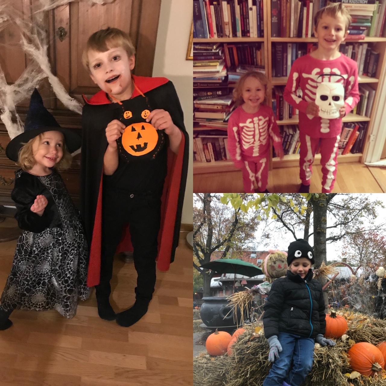 Halloweenbarn